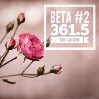 beta #2.jpeg